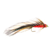 Killer Trout Red Stl.8
